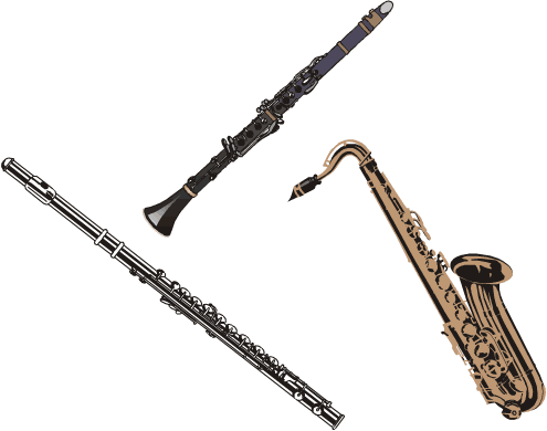A flute, a clarinet, and a saxophone.
